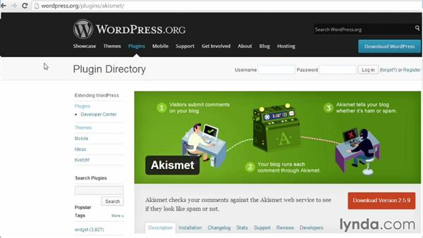 Welcome: WordPress Developer Tips: Deleting Spam Comments in the Database