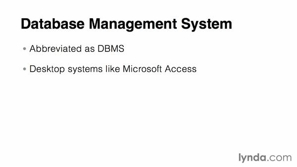 What is a database management system (DBMS)?: Relational Database Fundamentals