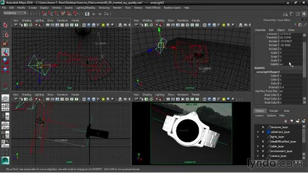 Controlling mental ray quality: Creating Product Shots in Maya