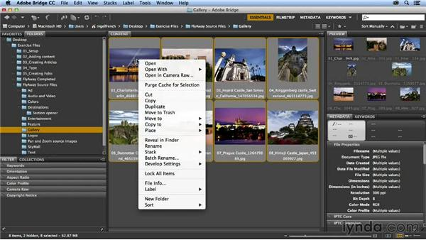 Formatting with object styles: Designing a Digital Magazine