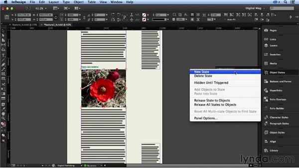 Creating a multistate object: Designing a Digital Magazine