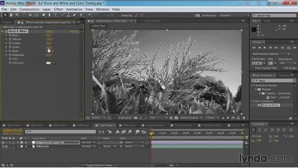Black-and-white conversion: Method three: After Effects Guru: Color Grading Footage