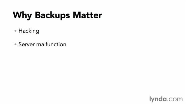 Why is backing up my site necessary?: WordPress Plugins: Backing Up Your Site