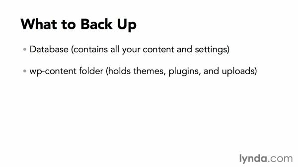 What needs to be backed up?: WordPress Plugins: Backing Up Your Site