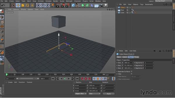 Transition time: Dynamics in CINEMA 4D