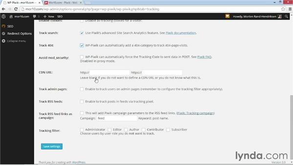 Connecting WordPress to Piwik: WordPress Plugins: Analytics