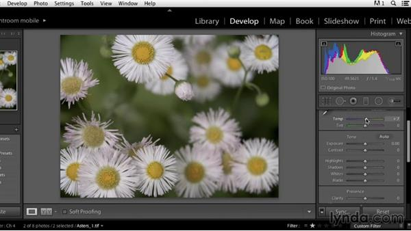 Welcome: Color Correction in Lightroom