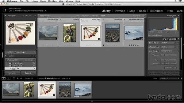 Overview of color correction tools in Lightroom: Color Correction in Lightroom
