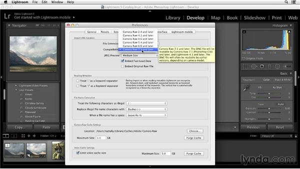 Setting up the interface for color adjustments: Color Correction in Lightroom