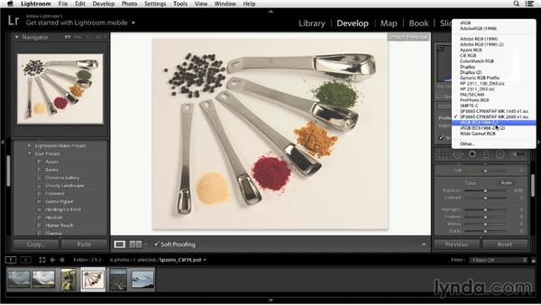 Using Lightroom's soft proofing: Color Correction in Lightroom