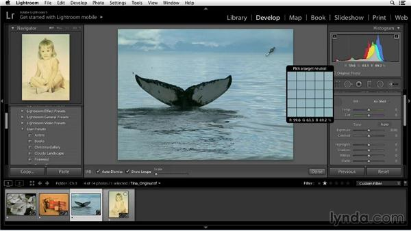 Identifying color casts with histograms and the Info tool: Color Correction in Lightroom