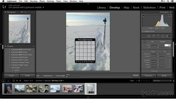 Adjusting color balance using the Info tool and the Tone panel: Color Correction in Lightroom