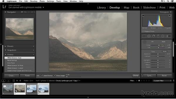 Using Lightroom's automated adjustment tools: Color Correction in Lightroom