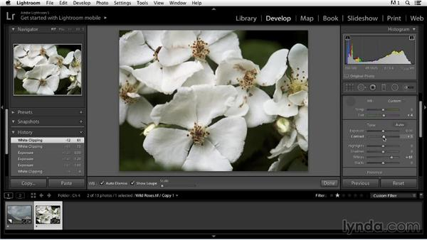 Adjusting overall brightness and contrast: Color Correction in Lightroom