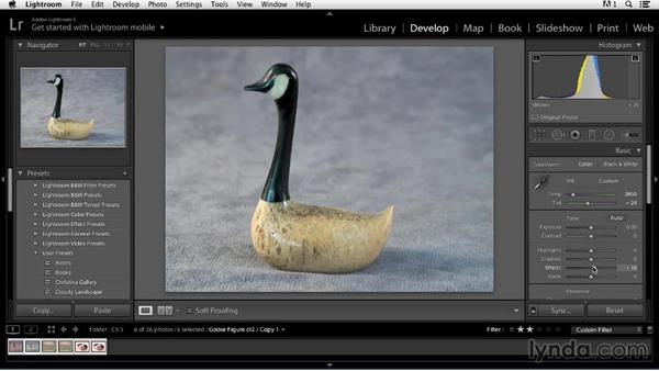 Color correcting product shots: Color Correction in Lightroom