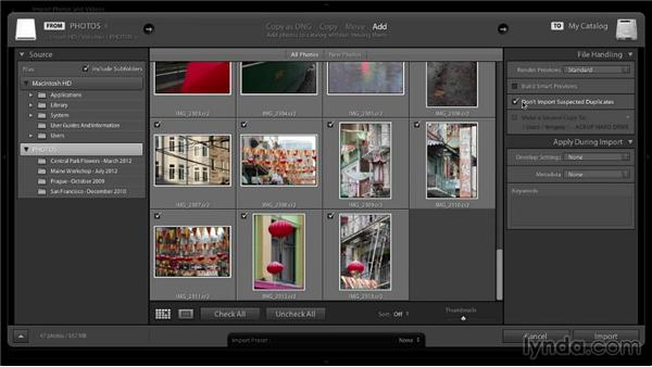 Importing existing images: Lightroom 5: 01 Organizing Your Photos