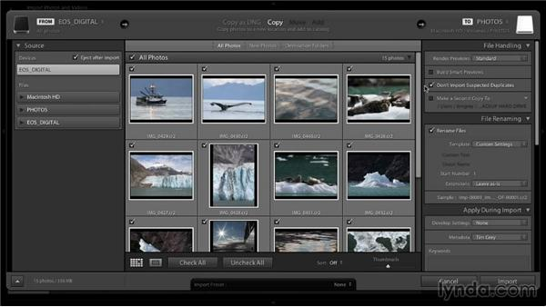 Importing new images: Lightroom 5: 01 Organizing Your Photos