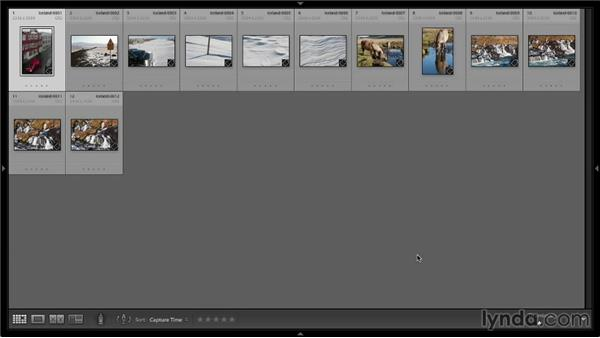 Reviewing images with the Grid and Loupe view: Lightroom 5: 01 Organizing Your Photos