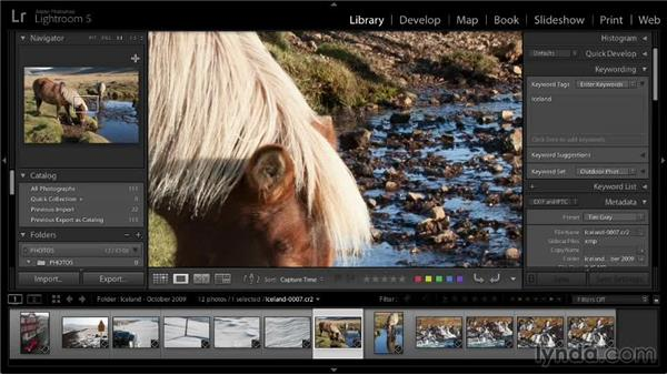 Zooming and panning in images: Lightroom 5: 01 Organizing Your Photos