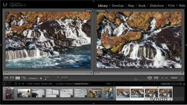 Using Compare view: Lightroom 5: 01 Organizing Your Photos