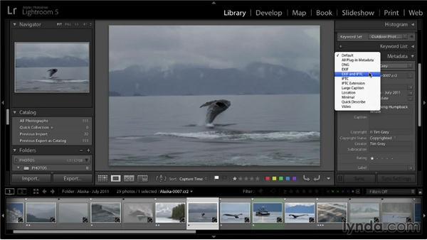 Basic metadata updates: Lightroom 5: 01 Organizing Your Photos