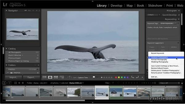 Adding keywords to photos: Lightroom 5: 01 Organizing Your Photos