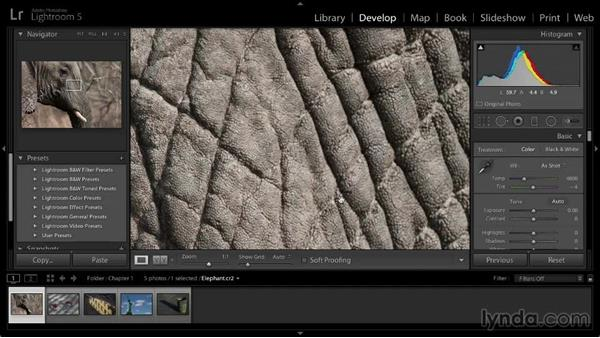 Evaluating images: Lightroom 5: 02 Optimizing Your Photos
