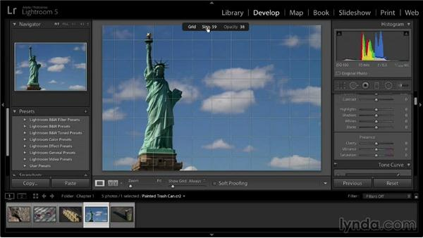 Utilizing the Grid and Guide displays: Lightroom 5: 02 Optimizing Your Photos