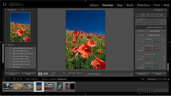 Camera calibration adjustments: Lightroom 5: 02 Optimizing Your Photos