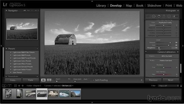 Adding a film-grain effect: Lightroom 5: 02 Optimizing Your Photos