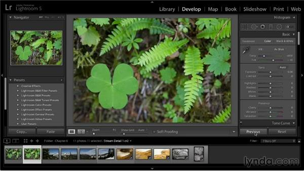Copying and pasting Develop settings: Lightroom 5: 02 Optimizing Your Photos