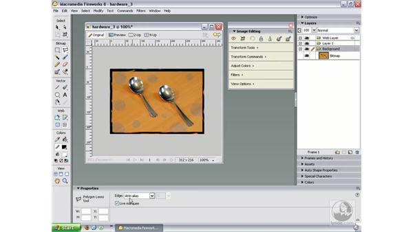Selecting pixels: Fireworks 8 Essential Training