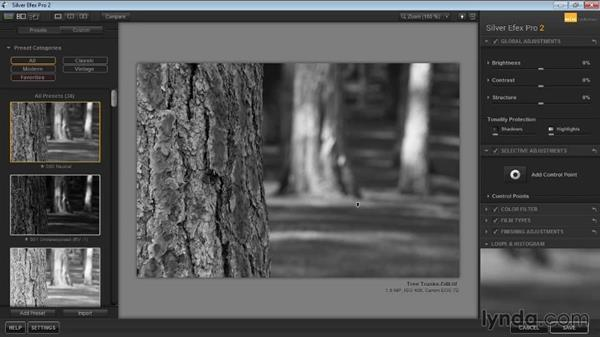 Loupe and Histogram displays: Learning Silver Efex Pro 2