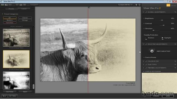Preview options: Learning Silver Efex Pro 2