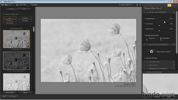 History, Undo, and Reset: Learning Silver Efex Pro 2