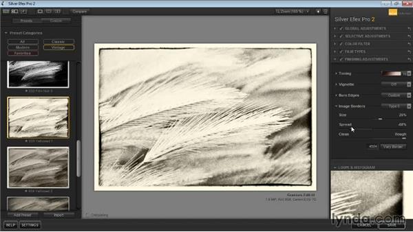 Adding a border effect: Learning Silver Efex Pro 2