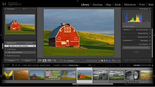 Selecting images for sharing: Lightroom 5: 03 Basics of Image Sharing