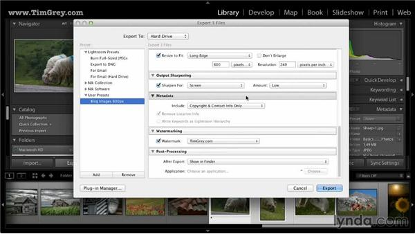 Exporting photos: Lightroom 5: 03 Basics of Image Sharing