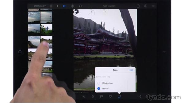 Flagging, favoriting, and tagging photos: iPhoto for iOS Essential Training