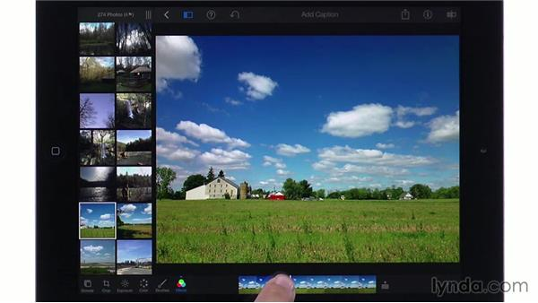 Using effects groups: iPhoto for iOS Essential Training