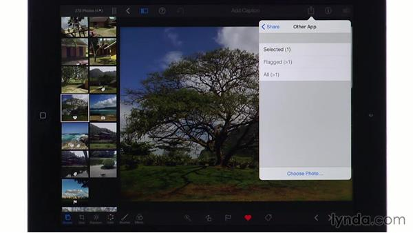 Sending photos to other apps: iPhoto for iOS Essential Training