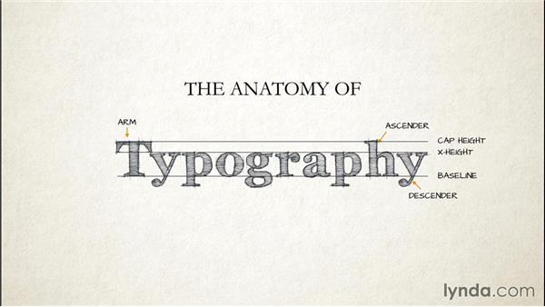 Exploring The Anatomy Of Type