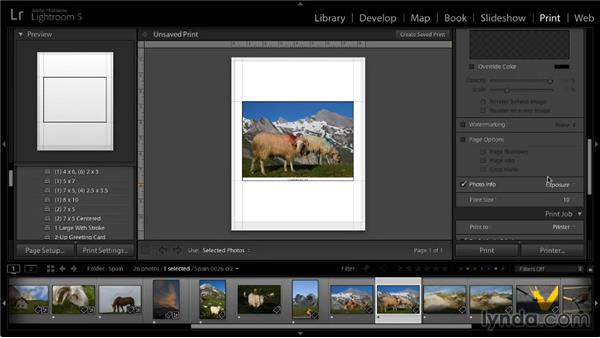 Adding text to a printed image: Lightroom 5: 05 Printing