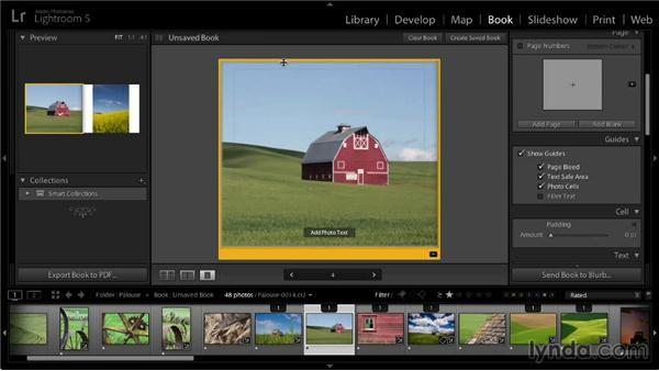 Fine-tuning image appearance: Lightroom 5: 07 Making Photo Books