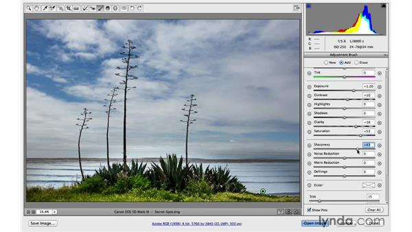 Resetting and duplicating local corrections: Photoshop for Photographers: 2014 Creative Cloud Updates