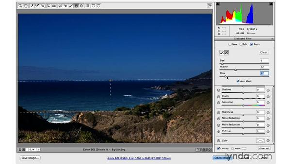 Modify the Gradient filter with a brush: Photoshop for Photographers: 2014 Creative Cloud Updates