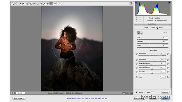 Customize the Radial filter with a brush: Photoshop for Photographers: 2014 Creative Cloud Updates
