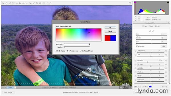 Selectively modifying masks in Camera Raw: Photoshop: 2014 Creative Cloud Updates
