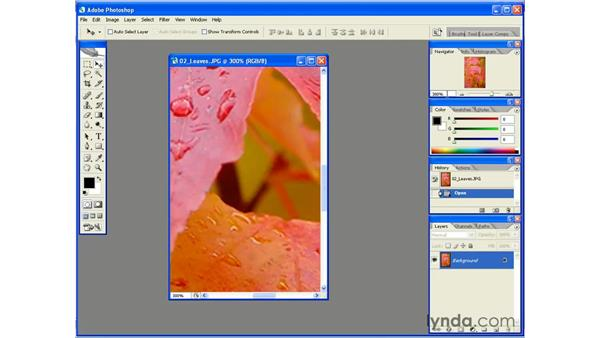 Using the Navigator Palette: Photoshop CS2 Essential Training