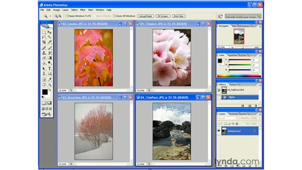 Managing Multiple Document Windows: Photoshop CS2 Essential Training